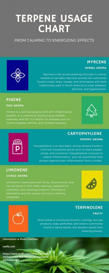 Information and image courtesy of leafly.com.
